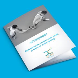 White paper eigenaarschap creëren voor jeze lf, je team en onderneming